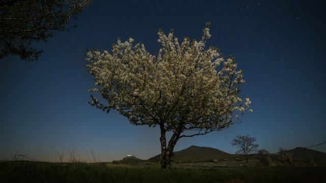 Füzér tavasszal